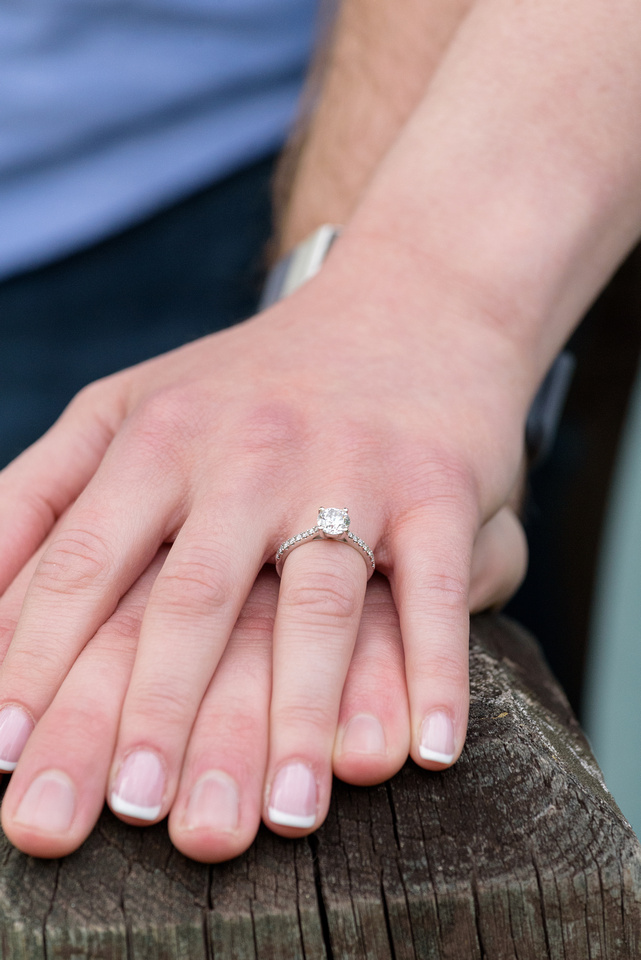 Brombacker Engagement 231.jpg